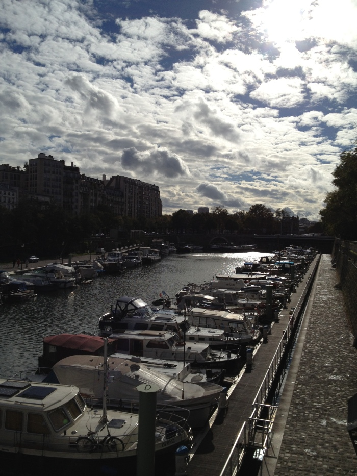 Banks of the Seine River, Paris