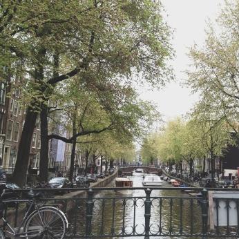 Amsterdam via MontgomeryFest